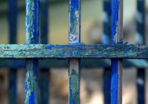 cage_bleue
